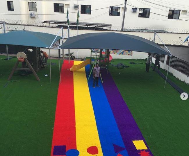 Nursery Color grass